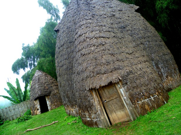The incredible 'elephant' huts of the hills