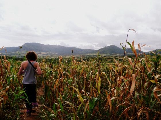 The walk to meet the Banna families