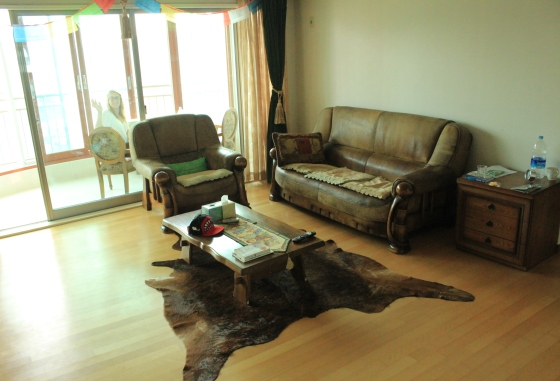 The insane living room, complete with cow skin rug!