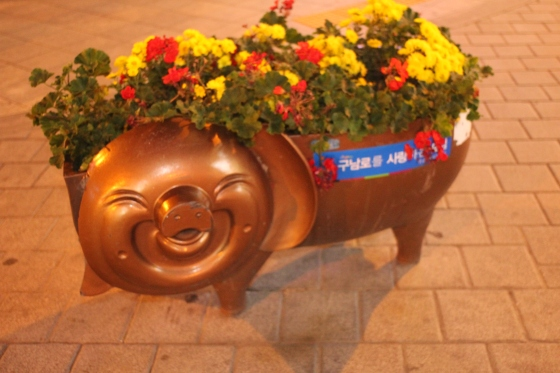 Piggy flowerpots are to be found around the central area